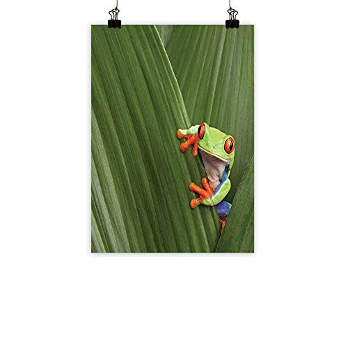 (BarronTextile Animal Modern Oil Paintings Red Eyed Tree Frog Hiding in Exotic Macro Leaf in Costa Rica Rainforest Tropical Nature Canvas Wall Art Green 24