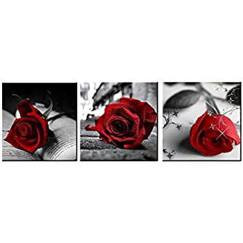 Amazon.com: Red Rose Flowers Gray Book Canvas Wall Art Pictures ...