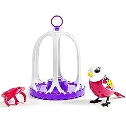 DigiBirds - Bird with Bird Cage - Graffitti
