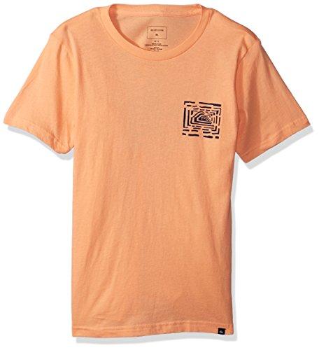- Quiksilver Boys' Big Husky Lines Tee Kids, Cadmium Orange, M/12