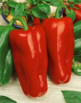 *Seeds and Things 30 Marconi Italian Rosso-red Pepper Seeds (Long Italian Pepper Seeds compare prices)