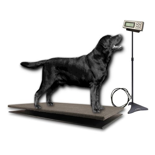 ZIEIS | 150 Lb. Capacity | Large Pet Series - Digital Dog Scale | CP150-3020-SURGE-LCD | 30'' X 20'' BigTop Cozy Pawz Platform | Adjustable LCD Stand | Surge Protector | 0.1 Lb. Accuracy by ZIEIS