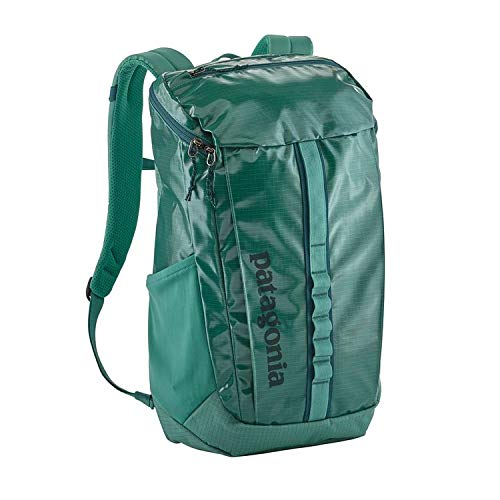 4c38655a07 Patagonia Black Hole Pack 25L