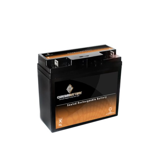 12V 20AH SLA Battery replaces UB12220 51913 12896 ub12180 gp
