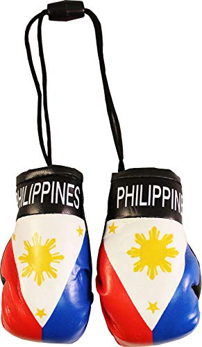 Flagline Philippines - Mini Boxing Gloves