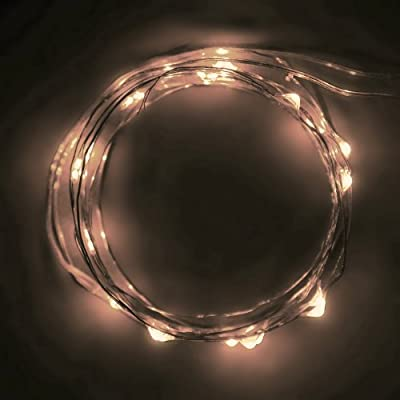 Rtgs Micro LED 60 Super Bright Warm White Color Indoor and Outdoor String Lights Battery Operated on 20 Ft Long Green Color Ultra Thin String Wire with Automatic Timer and 8 Functions [NEWEST VERSION] + 100% RTGS Products Satisfaction Guarantee