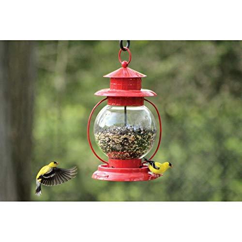 - PineBush Red Lantern Seed Feeder