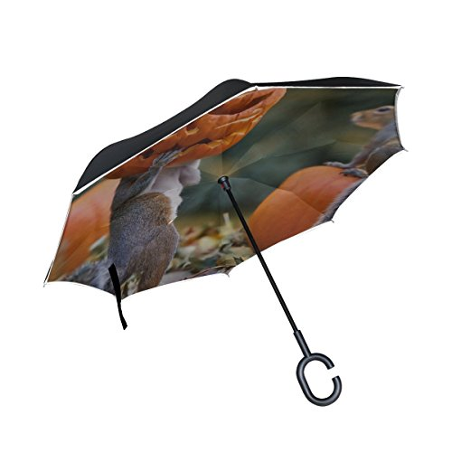 RH Studio Inverted Umbrella Halloween Squirrels Pumpkin Mask Large Double Layer Outdoor Rain Sun Car Reversible Umbrella]()