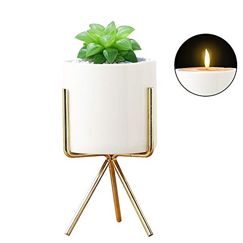 (Plant Stand for Desk Indoor, Mid Century Flower Pot Holder Small Decorative Mini Cactus Artificial Plants Container for House, Garden & Patio Office and Bedroom (Gold))