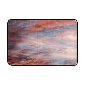 RH Studio Bird Sky Clouds - Felpudo para interior y exterior, para entrada de suelo o baño, 60 x 40 cm