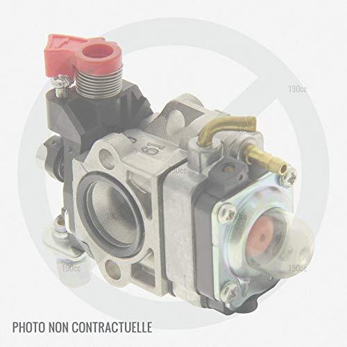 Mastercut 09263084 - Carburador desbrozadora: Amazon.es: Jardín