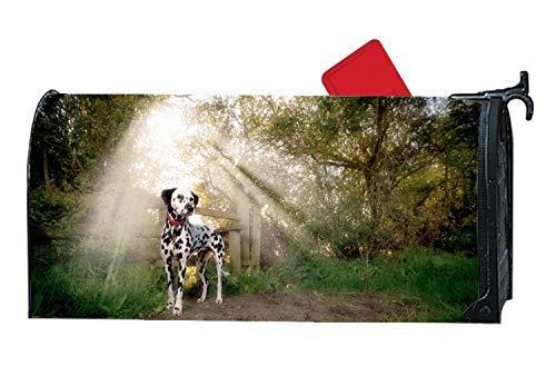 Tollyee Dalmatian in est Large//Oversized Magnetic Mailbox Cover Mailwraps Magnetic Mailbox Cover 6.5 W x 19 L