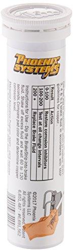 Phoenix Systems (PHOFASCAR-1-100) Brake Fluid Test Strips (100 / Tube) by PHOENIX VITAL LIFE (Image #2)