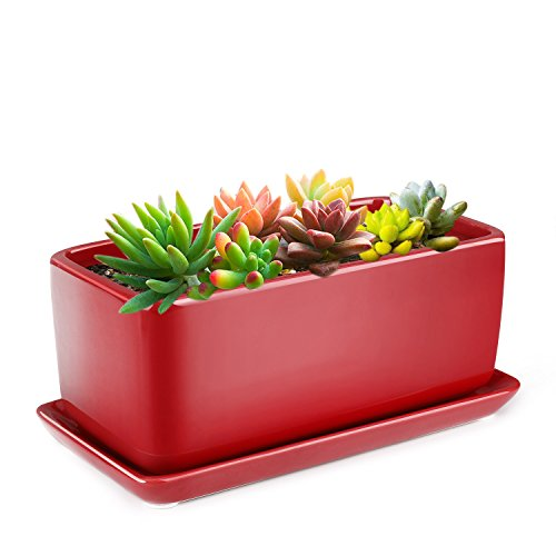 Flexzion 10 Inch Rectangular Ceramic Succulent Planter Pot - Cactus Herb Flower Container Window Box Holder with Removable Drip Tray Base for Tabletop Desktop Indoor Outdoor Home Office Garden (Red)