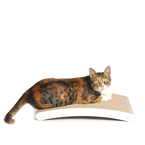 41FqxXVuH6L - 4CLAWS Curve Scratching Pad (White) - BASICS Collection Cat Scratcher