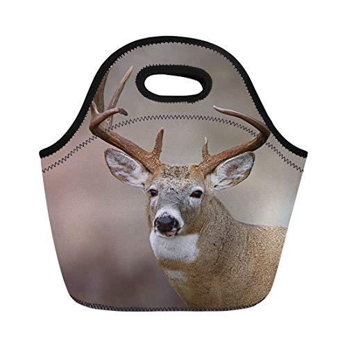 Semtomn Neoprene Lunch Tote Bag Trophy Whitetail Buck Deer Midwestern Hunting Illinois Ohio Wisconsin Reusable Cooler Bags Insulated Thermal Picnic Handbag for Travel,School,Outdoors, Work