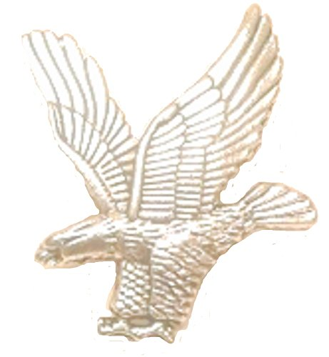 Wood Badge Silver Eagle Pin