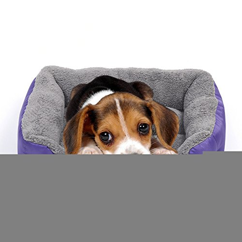 Barelove Pet Dog Bed, Washable Rectangular Pet Basket Bed , Durable and 100-Percent Waterproof and Fleece Lining Fit Most Pets (Large, Purple)