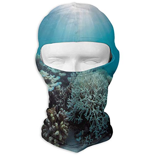 YIXKC Balaclava Save Coral Reefs Fantastic Ski and Winter Sports Headwear Snowboarding for Women ()