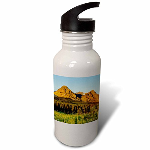 3Drose Danita Delimont   Glacier National Park   Wildflowers  Cut Bank Valley Of Glacier National Park  Montana   Flip Straw 21Oz Water Bottle  Wb 231076 2