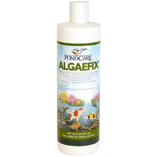 Algae Growth Ponds (Aquarium Pharmaceuticals PondCare AlgaeFix, 16oz)