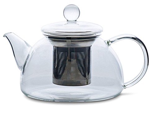 Redbird Glass Teapot Kettle with Stainless Steel Tea Infuser