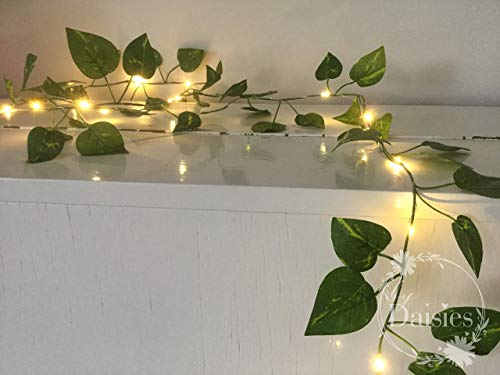 cheap for discount 42df8 225f5 Amazon.com: Green Leaves Fairy Lights/String Lights - 2m 20 ...