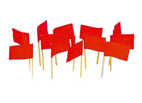 Red Flag Toothpicks (100)
