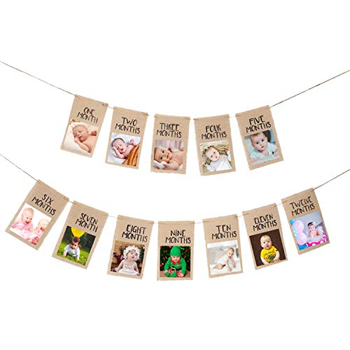 (Newborn to 12 Month Baby Photo Banner,1-12 Month Photo Prop Party Bunting,One Years Old Birthday Party Celebration Decoration (Big))