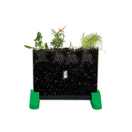 Watch it grow plant viewer
