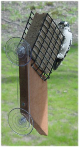 Songbird Essentials SE539 Suet Window Feeder (Set of 1)