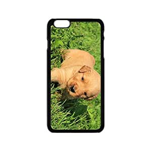 Puppies Dog Hight Quality Plastic Case for Iphone 6
