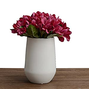 Artificial Flower 10 Heads Bounquet Artificial Plumeria for Home Decor Without Vase & Basket, 1 Flower, Red 47