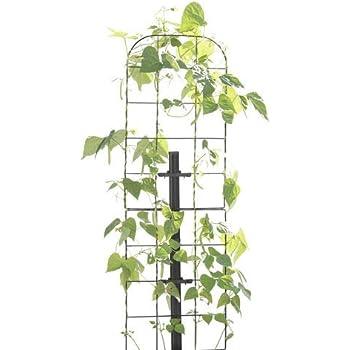 Amazon Com Gardener S Supply Company Tall Expandable Pea