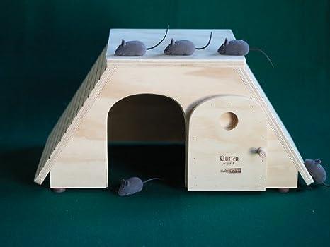 Egitto tamaños M, casas para gatos Profesional y rascadores Blitzen Original Made in Italy 100%: Amazon.es: Hogar