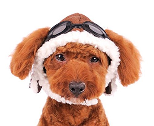 Dogo ''Aviator'' Hat For Cat Dog Puppy Pet (XL) by DOGO DESIGN