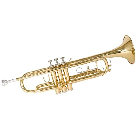 10 Best Student Trumpets of 2019 (Review)