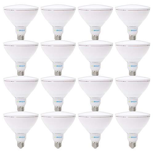 Viribright 75 Watt LED Light Bulbs 16, New Star Certified, Dimmable, Energy Saving, Low Cost, Super Value Pack, PAR38, E26-16, 6000k-Daylight