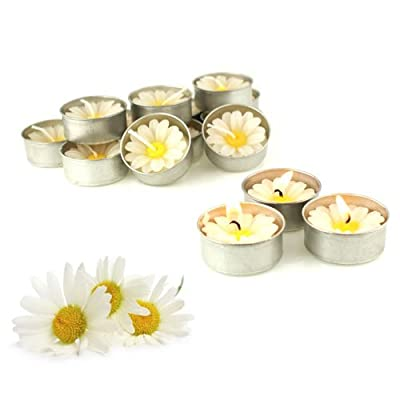 Relax spa shop® Daisy White Candle in Tea Lights, Floating Candles, Scented Tea Lights, Aromatherapy Relax (Pack of 10 Pcs.)