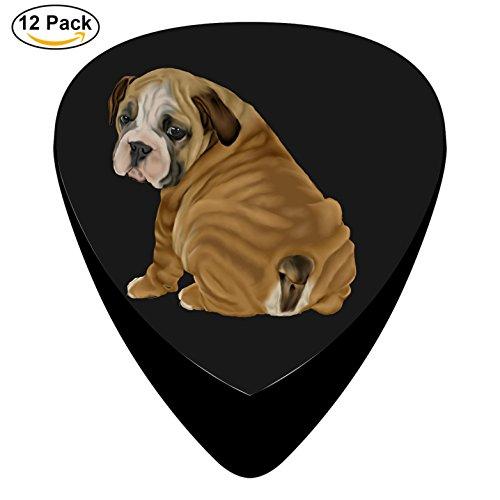 Sylvia English Bulldog Puppy Celluloid Guitar Picks Unique designs Music Gifts
