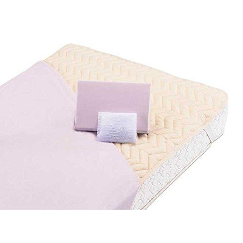 グッドスリーププラス ベッド用シーツ、ベッドパッドバイオ3点パック ダブル 4色対応 フランスベッド社製 B0764BR4TT 生成り色 生成り色