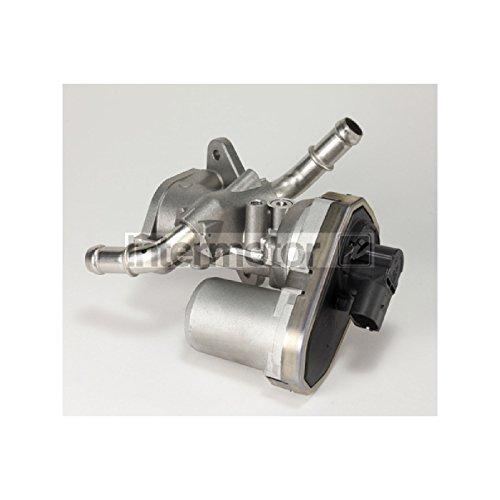 Intermotor 14335 EGR Valve: