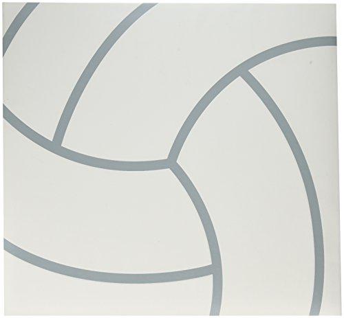 Darice 12-5010 Scrapbook Volleyball Textured Cover Protectors, 12x12