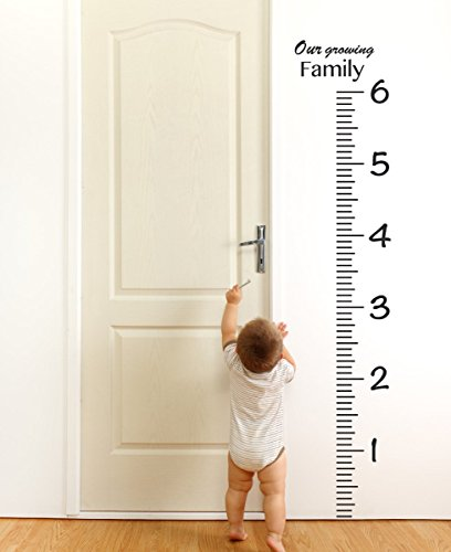 Giant Vinyl Growth Chart Kit | Kids DIY Height Wall Ruler La