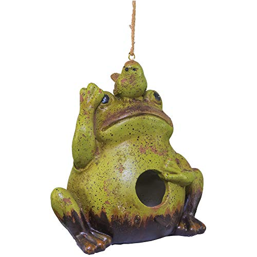 (Garden Frog with Bird Speckled Green 8 x 8 Resin Stone Hanging)