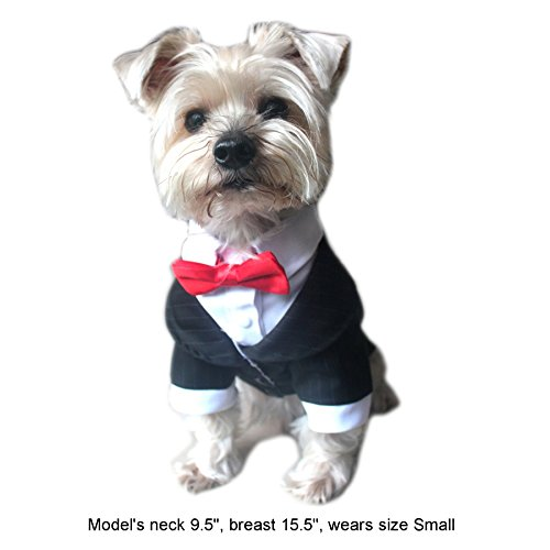 Alfie-Pet-by-Petoga-Couture-Oscar-Formal-Tuxedo-with-Black-Tie-and-Red-Bow-Tie-Color-Black-Size-Large