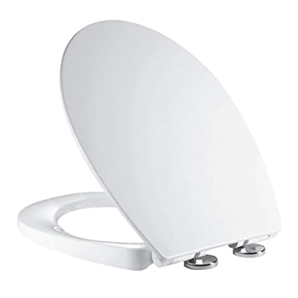 Tremendous Soft Close Toilet Seat Ergonomic Design With Quick Release Stainless Steel Hinges Dual Fixing System Mass Dynamic Onthecornerstone Fun Painted Chair Ideas Images Onthecornerstoneorg