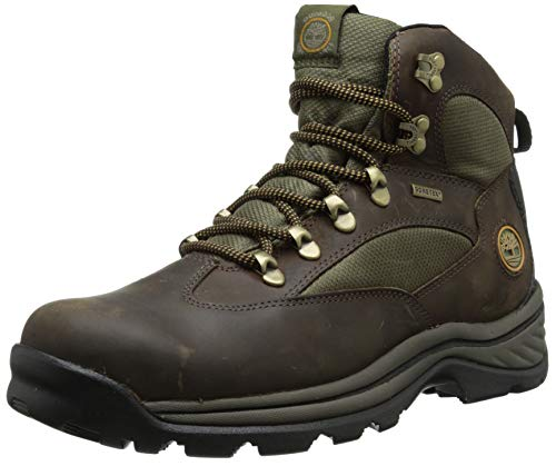 Timberland Men's Chocorua Trail Mid Waterproof, Brown/Green, 9.5 D - Medium (Fine China Wheat)