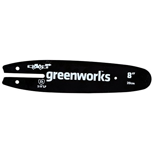 (Greenworks 8-Inch Replacement Pole Saw Bar 29062)