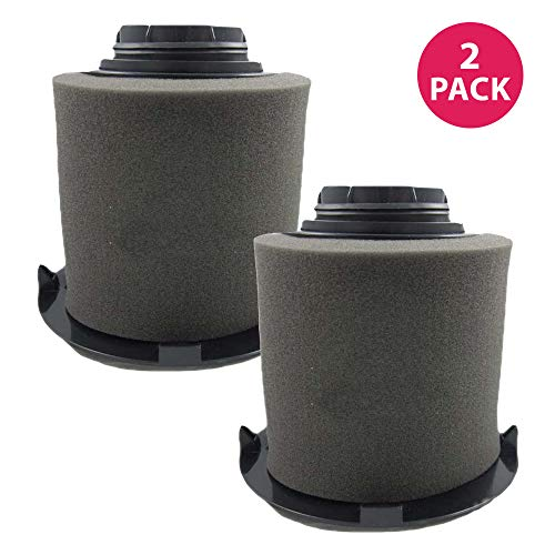 Crucial Vacuum Pre-Filter Replacement - Compatible with Dirt Devil Part # 1JW1100000 & 2JW1000000, Dirt Devil F16 HEPA Style Filter & Foam Pre-Filter - Durable, Compact, Washable (2 Pack)